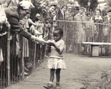 zoo-humano-belgica